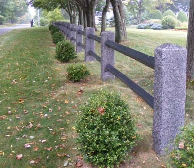 Caledonia fence posts